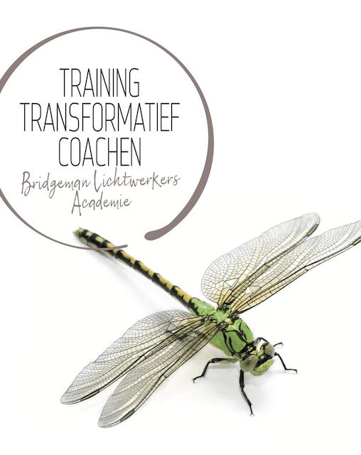 Training transformatief coachen